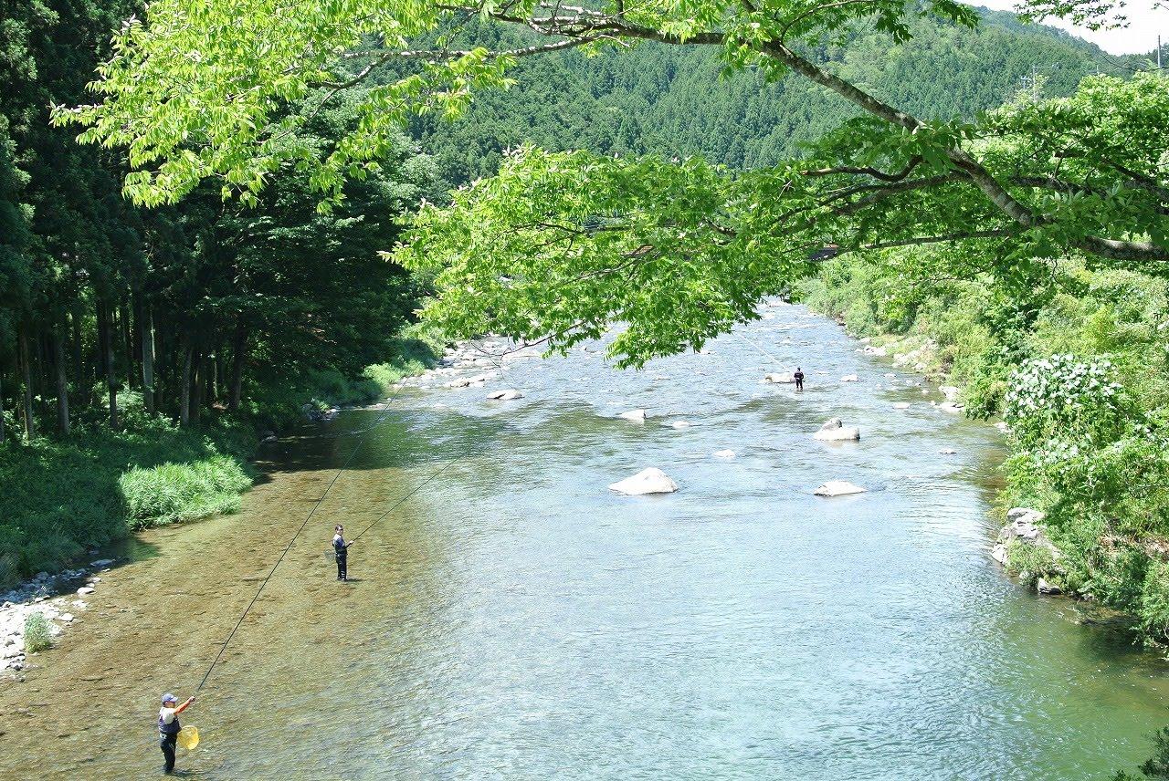 東白川の鮎釣りスポット